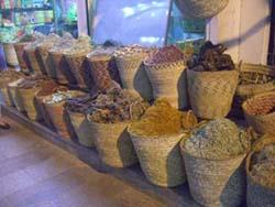LUXOR - Safir/Sea Shell-Hurghada
